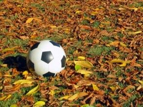 fall soccer Icon